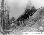#1499 on timber trestle, Long Lake line
